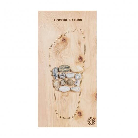 Fußreflexzonenmassage Dünndarm Dickdarm Zirbe Linker Fuß