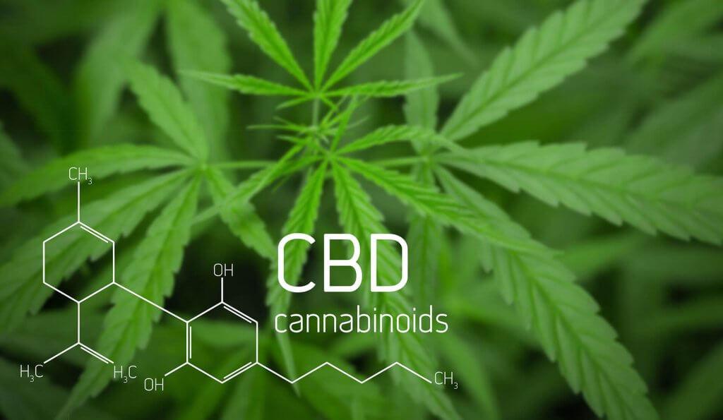 CBD Öl Cannabidiol von höchster Qualität